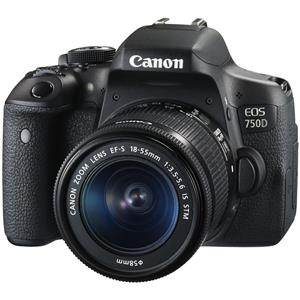 Canon EOS 750D / Rebel T6i / Kiss X8i Kit 18-55 IS STM Digital Camera